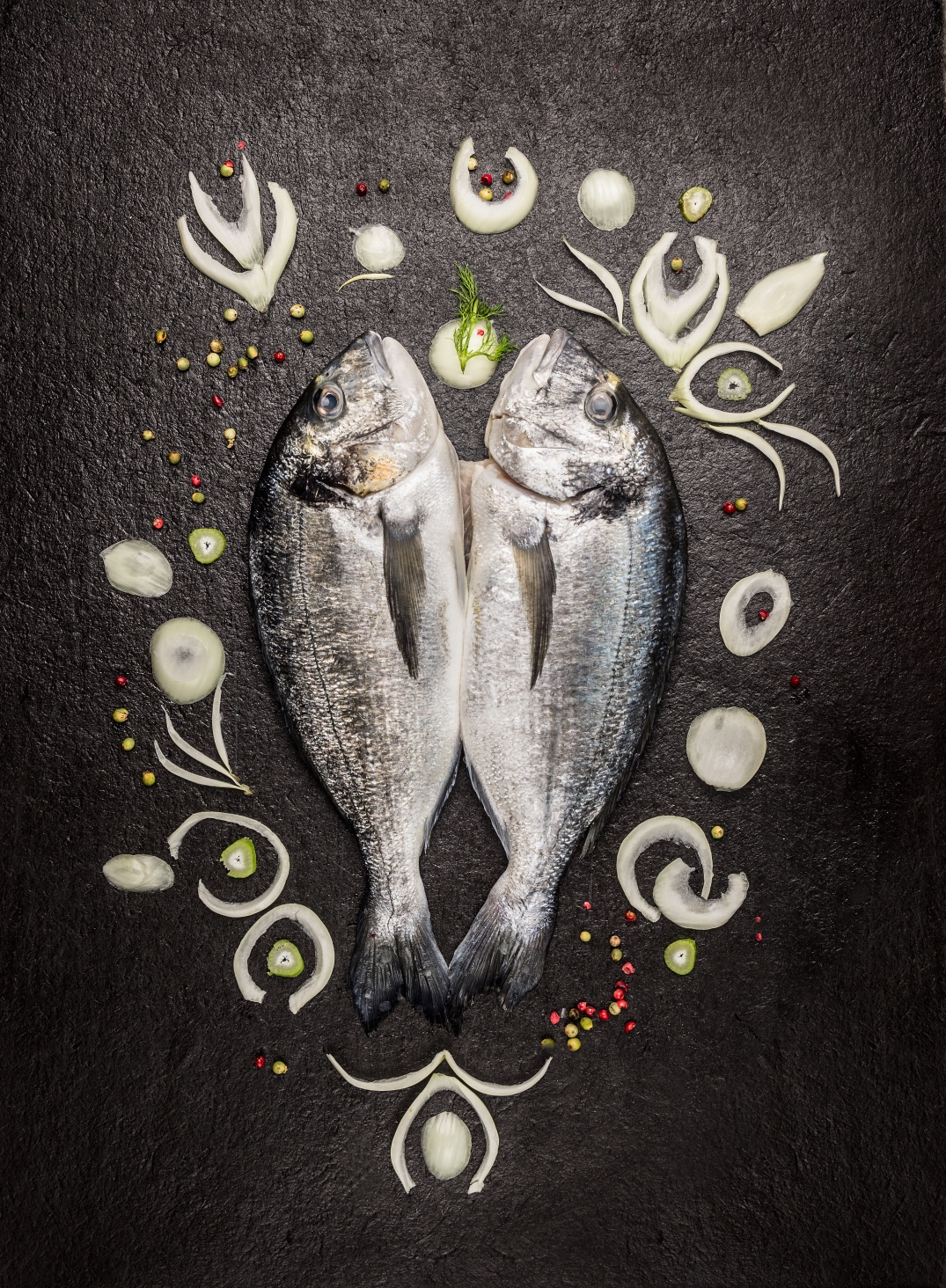 Two raw whole dorado fish with spices pattern on dark background, top view