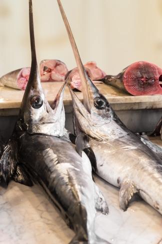 Swordfish in a fish market in Sicily
